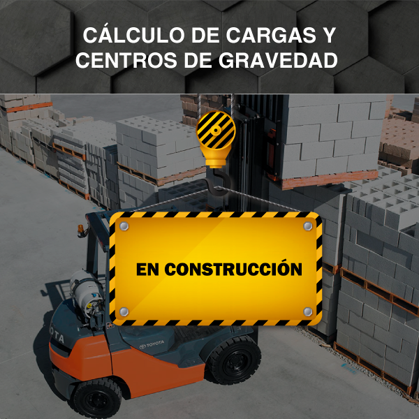 Calculo de Cargas y C.G.