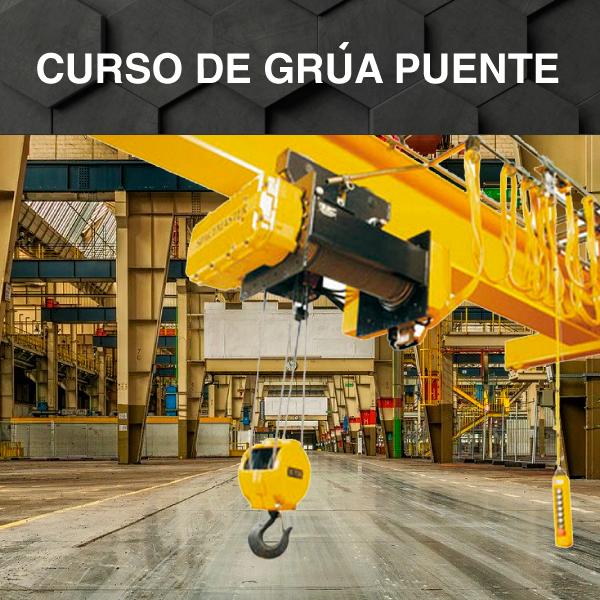 Operador de Grúa Puente / Pórtico